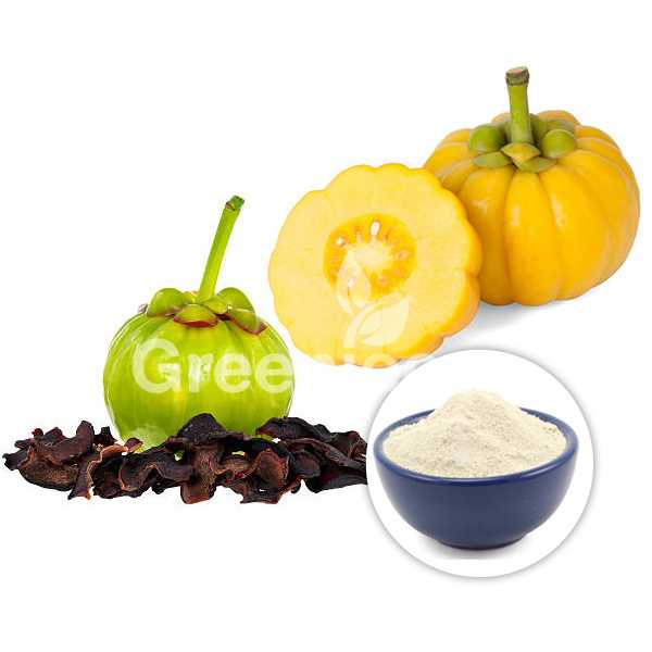Garcinia Extract Powder 60% HCA USP