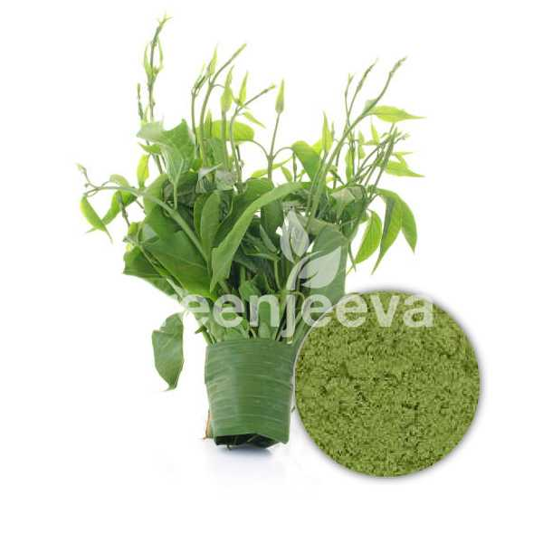 Gymnema Sylvestre Extract Powder 75% Gymnemic Acid Gravimetry