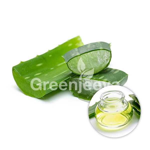 Organic Aloe Vera Extract Powder 200:1